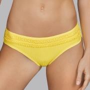 Andres Sarda Swimwear - ARACARI - short Front